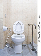 White lavatory with hand rail - White lavatory with hand...