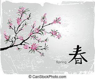 Sakura blossom - Japanese painting of flowers, background...