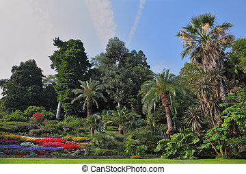 The flowerbeds in an exotic park