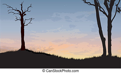 landscape trees - landscape with 3 trees as a silhouette