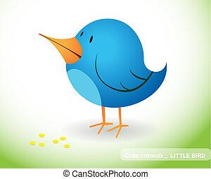 Little bird - Blue little bird