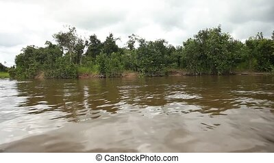 Landscape, Amazon River