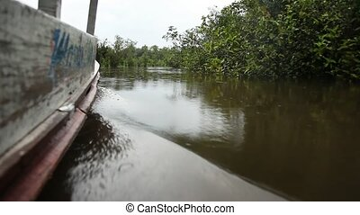 Boat At Amazon River