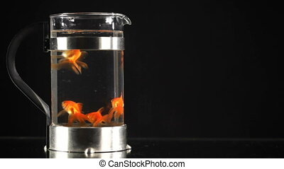 Concept: big companies have more power. Goldfish.