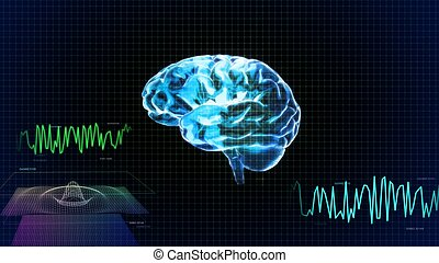 the crystal brain left side and wave graph