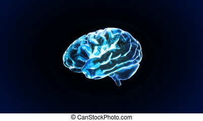 brain - X-ray Brain to represent the theme of human,...