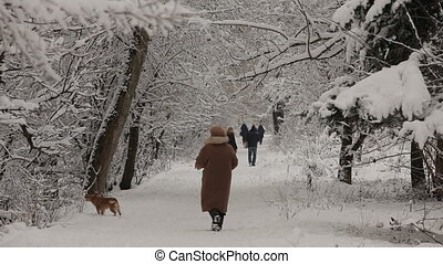 People in the snow-covered park HD - People are walking by a...