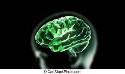 green brain zoom into cell - X-ray Brain to represent the...