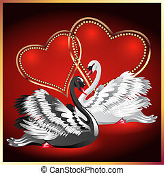 White and black swan on red background with hearts