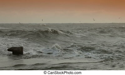 Storm Gale - Heavy seas during a winter storm Crimea, Black...