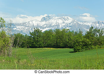 Rural landscape in front of mountain in the Hautes-Alpes in...