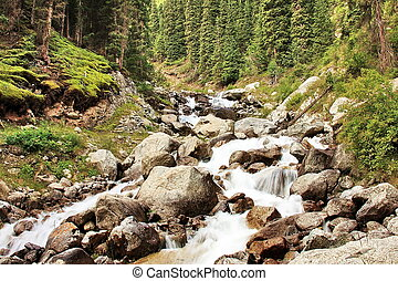 Glacier fed stream in Kyrgyzstan - Glacier fed stream...