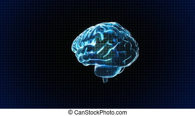 brain rotate with grid background - X-ray Brain to represent...