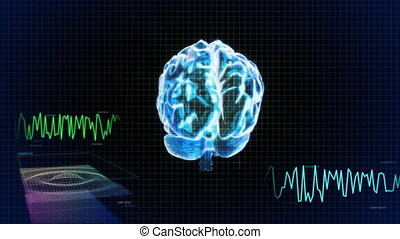 3d brain wave scanning screen - X-ray Brain to represent the...