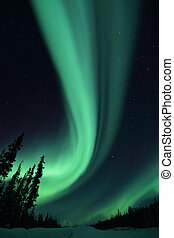 Northern Lights - Aurora Borealis on the Ingram trail NWT
