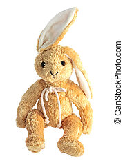 Plush toy - Plush bunny isolated on white