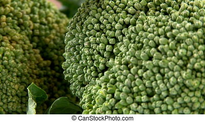 Vegetable, Broccoli, Food - Vegetable, Broccoli, closeup,...