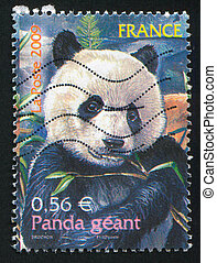 Giant Panda - FRANCE - CIRCA 2009: stamp printed by France,...