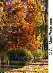 Fall Colors - Nice fall colors in November, Campello sul...