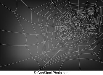spider web - a vector illustrations of spider web, with copy...