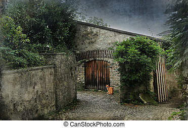 Cat in courtyard - Tabby cat waiting by an old door in a...