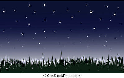 starry night vector illustrations