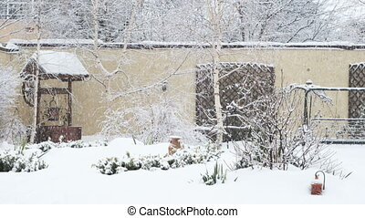 Backyard winter scene