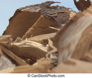 wood shaving sawdust pile - The retreat of wood shavings and...