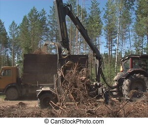 crushing tree branches - Special machinery crushing tree...
