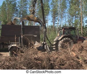 chop tree branch - Special machinery chop tree branches....