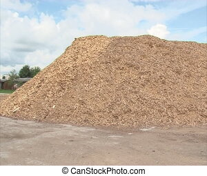 sawdust wood shavings - Pile of sawdust, wood shavings...