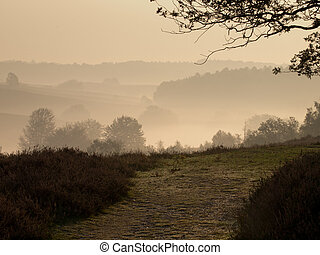 A trail in a hilly misty landscape during sunrise