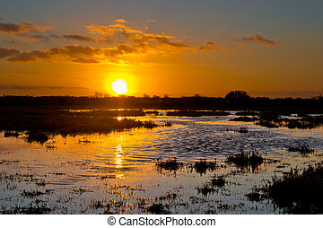 Sunset over wet agricultural nature reserve in the...