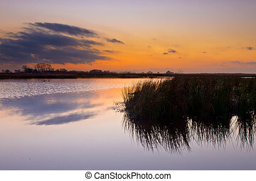 Colorful sunset over wetland in the Netherlands