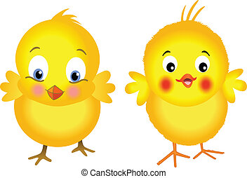 Yellow Chicks - Image representing a yellow chicks, isolated...