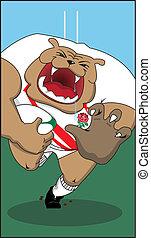 English Rugby Bulldog - Bulldog running at the page with...
