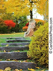 Stone stairs in a japanese garden - Stone stairs in a autumn...