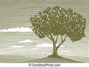 Woodcut Tree Landscape - Woodcut style illustration of a...