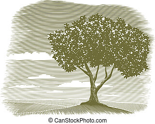 Woodcut Tree Landscape Vignette - Woodcut style illustration...