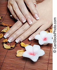 French Manicure - Female hands with french manicure
