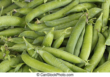 Fresh picked pea pods