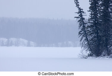 Waskesui Lake Canada Winter Prince Albert Park