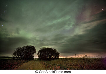 Northern Lights Canada green and purple Saskatchewan