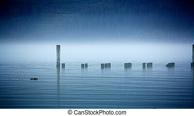 Posts in the Mist - a foggy view of a horizontal pattern of...
