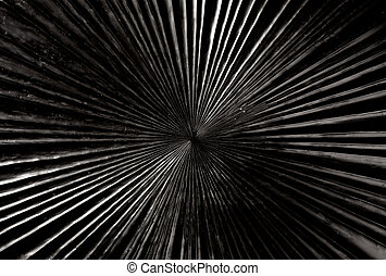 black carved wood with radial shape texture background