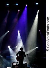 gitarr, spelare, arrangera