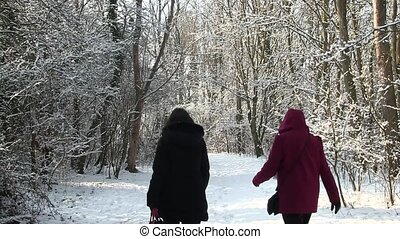 Two women walking in a snowy wood.