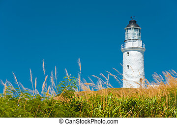 Dongju Matsu Lighthouse Tall Grass Foreground - A...