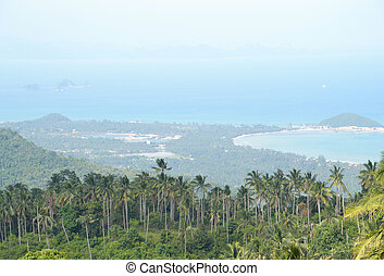 view point - ko samui view point sea view and forrest.