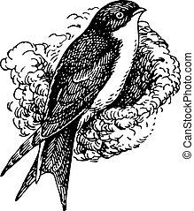 Bird sitting in its nest